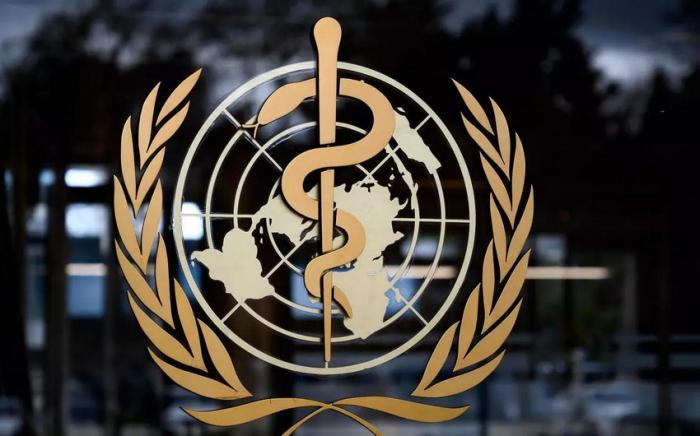 WHO praises Azerbaijan's COVID-19 vaccination campaign