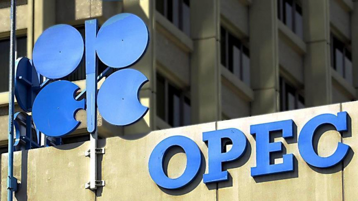 OPEC forecasts 6% increase in global oil demand in 2021