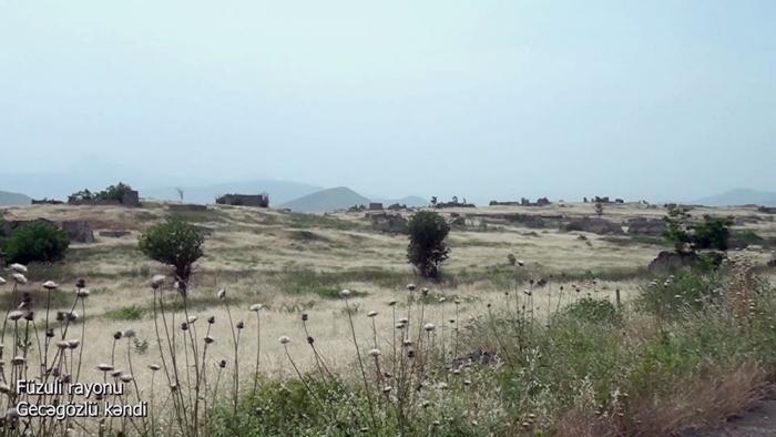 Le ministère de la Défense diffuse une   vidéo   du village de Gedjegozlu de la région de Fuzouli