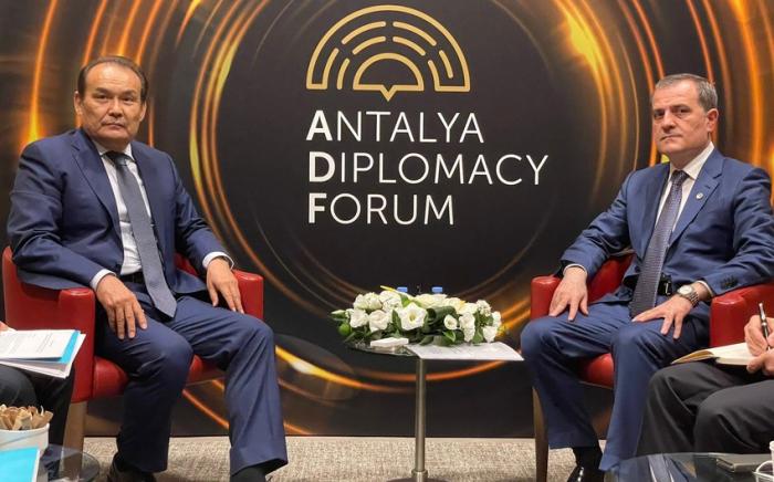 Baghdad Amreyev: La Declaración de Shusha contribuirá a la paz en la región