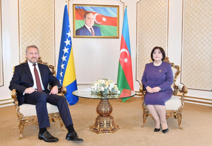 Azerbaijani parliament speaker meets with her counterpart from Bosnia and Herzegovina