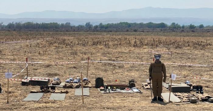تنظيم جولة صحفية للتعرف على أعمال إزالة الألغام في الأراضي المحررة -   صور