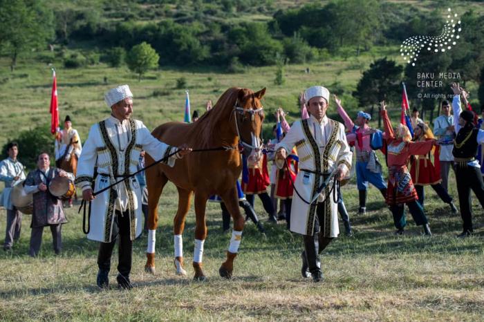 تقديم حصان كاراباخ إلى أردوغان صور+فيديو من عرض الموسيقى