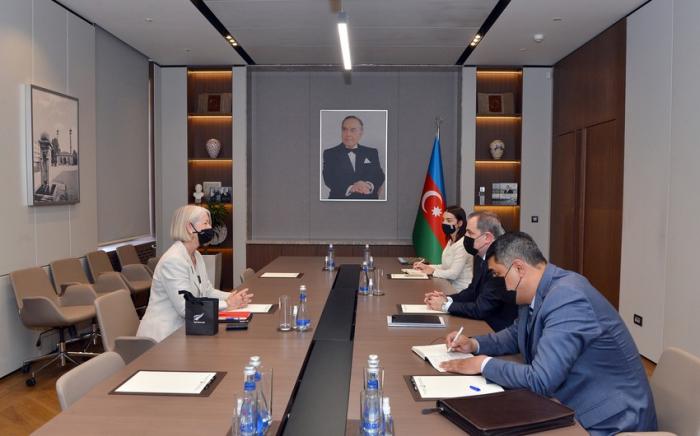 جيهون بيراموف يتمنى النجاح للسفيرة الجديدة