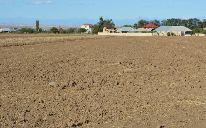 Qanunsuz verilən 2400 hektardan çox  torpaq geri qaytarıldı