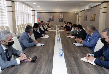 El Comité de Estadística de Azerbaiyán y UNICEF elaboran un plan de acción conjunto para 2021-22