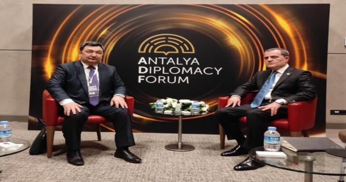 جيهون بيرموف يلتقى برئيس الأكاديمية التركية الدولية