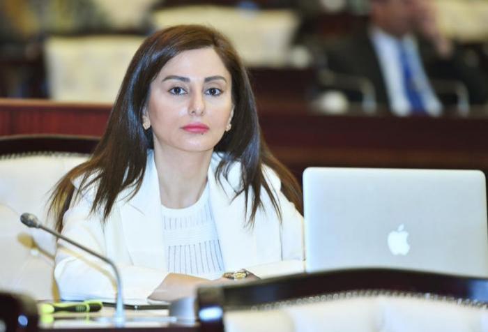 Deputat ATƏT PA-nın sessiyasında Ermənistanın cinayətlərindən danışıb