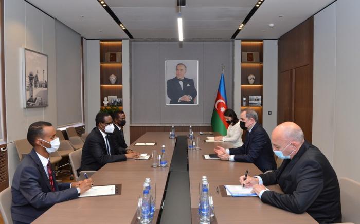 وزير الخارجية يلتقي مع سفير الصومال