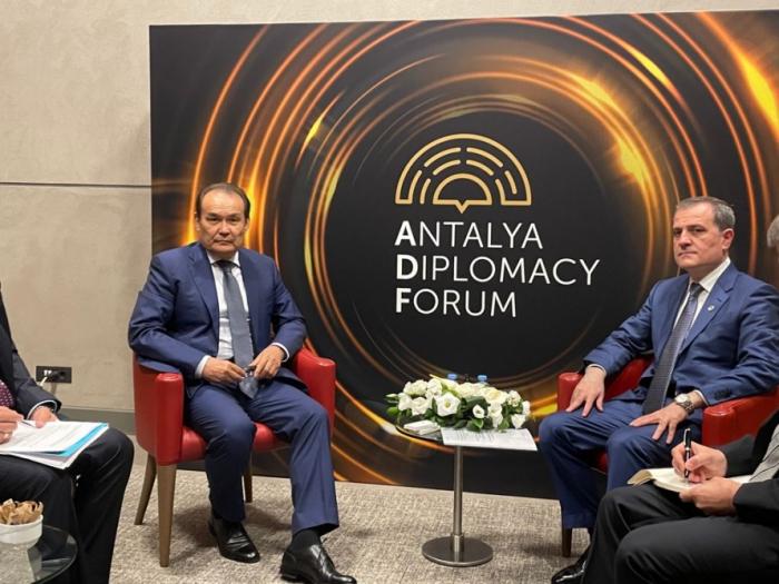 El Canciller de Azerbaiyán y el Secretario General del Consejo Turco se reúnen