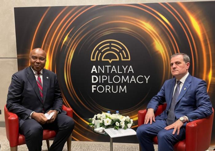 El Titular de Exteriores de Azerbaiyán se reúne con su par de Somalia