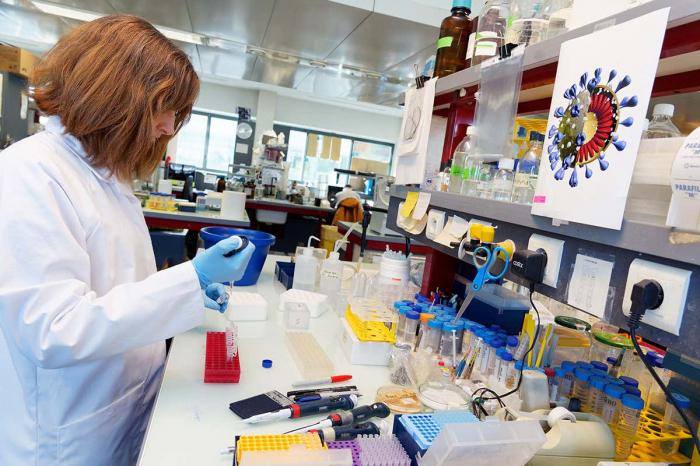 Amerikalılar COVID-19-un laboratoriyada yaradılmasına inanırlar