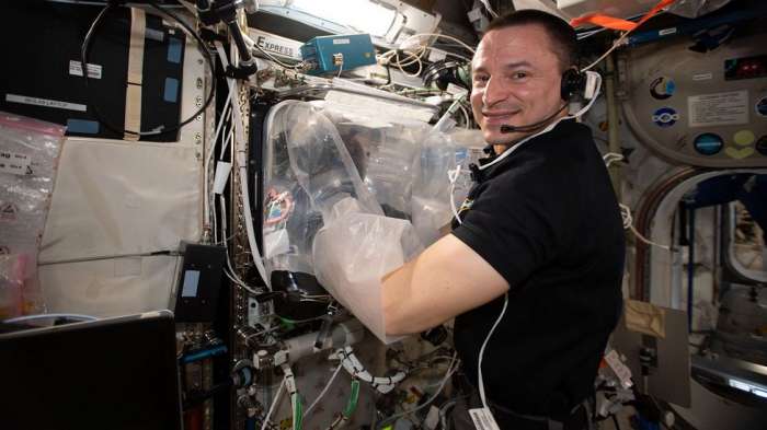 Why astronauts are printing organs in space -   iWONDER