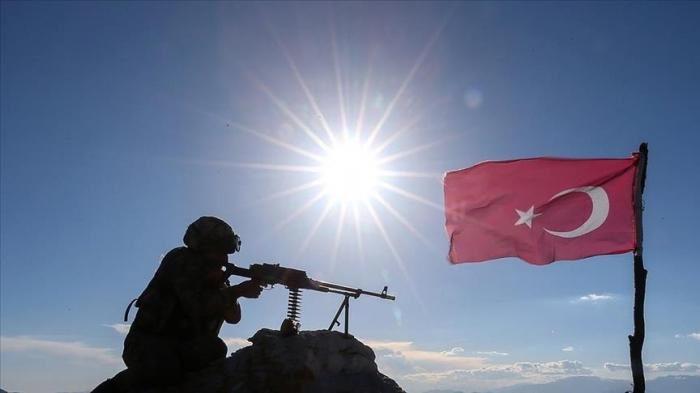 Türkiyə ordusu daha 5 terrorçunu məhv edib