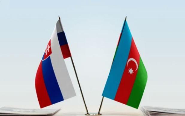 Azerbaijan, Slovakia hold political consultations between foreign ministries