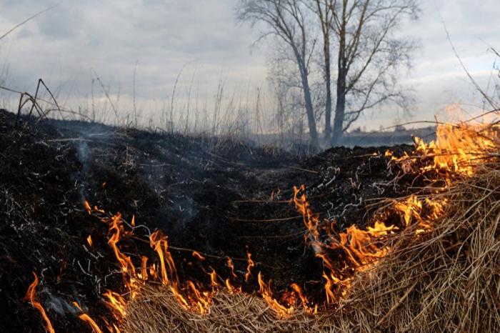 Fire breaks out in area mined by Armenians in Fuzuli district -  VIDEO