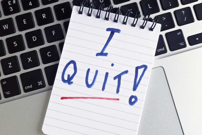 Why so many people are quitting jobs -   iWONDER