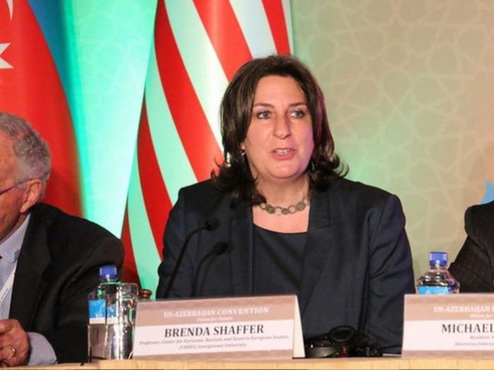 Tovuz battles provoked by Armenia - Brenda Shaffer