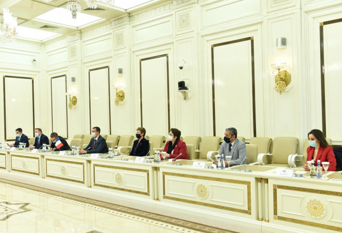 La presidenta de Milli Majlis se reúne con una delegación de la Asamblea Nacional francesa
