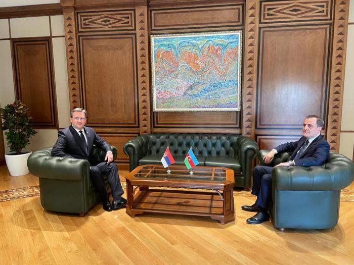 Entretien entre les ministres des Affaires étrangères azerbaïdjanais et serbe à Bakou - PHOTO
