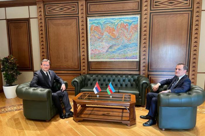 Se celebra una reunión entre los Ministros de Relaciones Exteriores de Azerbaiyán y Serbia