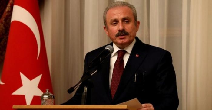 Parliament speaker highlights significant role ofShusha Declaration forTurkey-Azerbaijan ties
