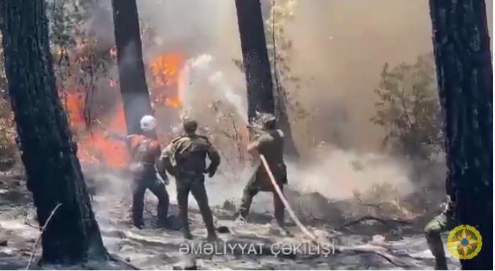 Las fuerzasdel Ministerio de Situaciones de Emergencia de Azerbaiyán combaten incendios en Turquía-   VIDEO