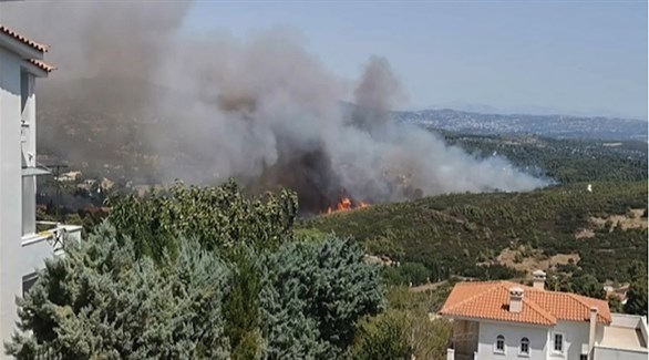 مربي نحل يتسبب في حريق غابات هائل قرب أثينا