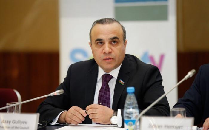 ATƏT PA-nın vitse-prezidenti erməniləri faktlarla susdurdu