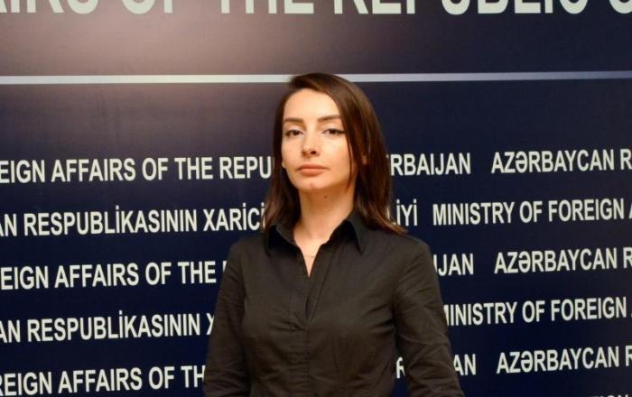 """""""Bütün məsuliyyəti Ermənistan daşıyır"""" -    Leyla Abdullayeva"""