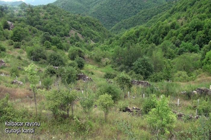 Kəlbəcərin Günəşli kəndi -