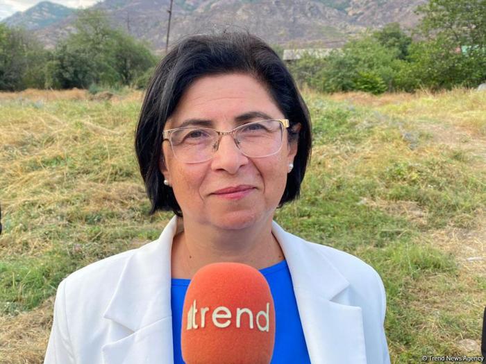Entire ideology of Armenians built on hatred, false history - Azerbaijani official