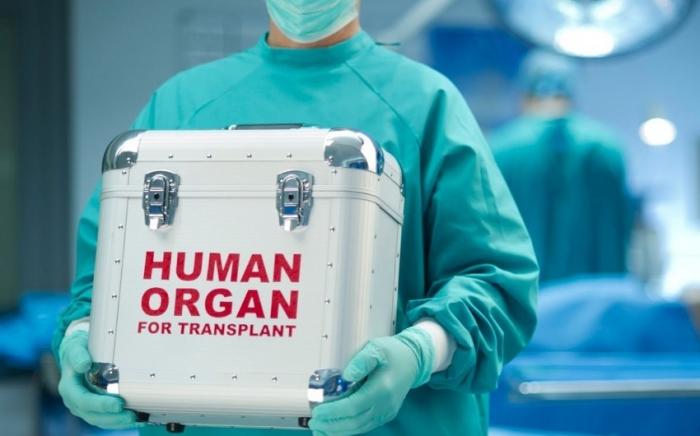 Orqan transplantasiyası gözləyənlər üçün yeni sənəd təsdiqləndi