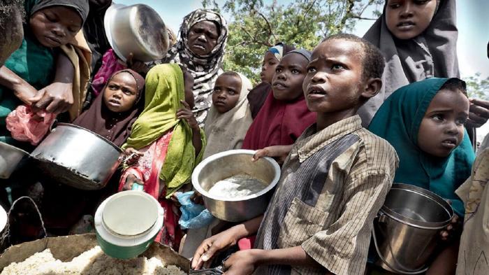BMT:   Efiopiyada 400 min insan aclıqdan əziyyət çəkir