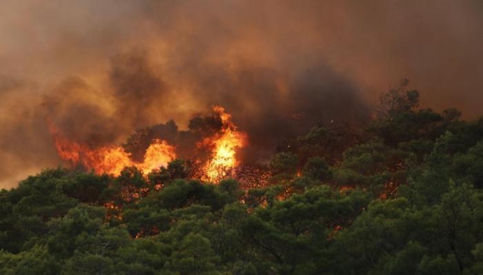 Arson-loving PKK prime suspect as forest fires hit Turkey
