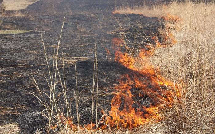 Un incendie se déclare dans les zones minées par les Arméniens à Khodjavend, des hélicoptères impliqués –  VIDEO