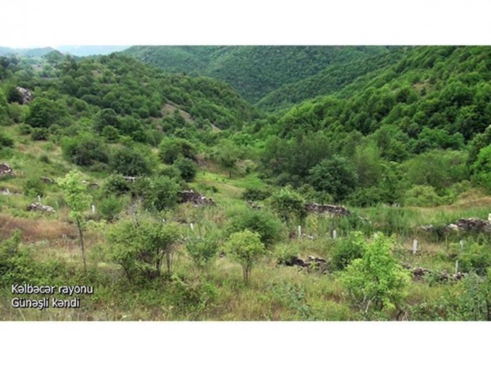 قرية جوناشلي في منطقة كالبجار -   فيديو