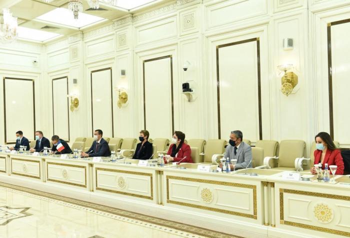 La présidente du Milli Medjlis a rencontré une délégation de l