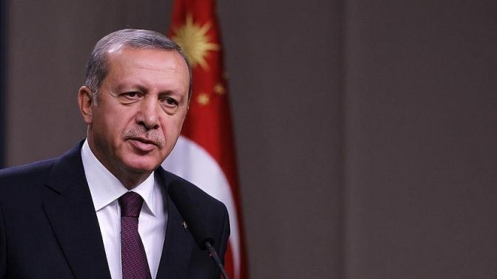 La Turquie mobilise tous ses moyens pour éteindre les incendies de forêts, affirme Erdogan