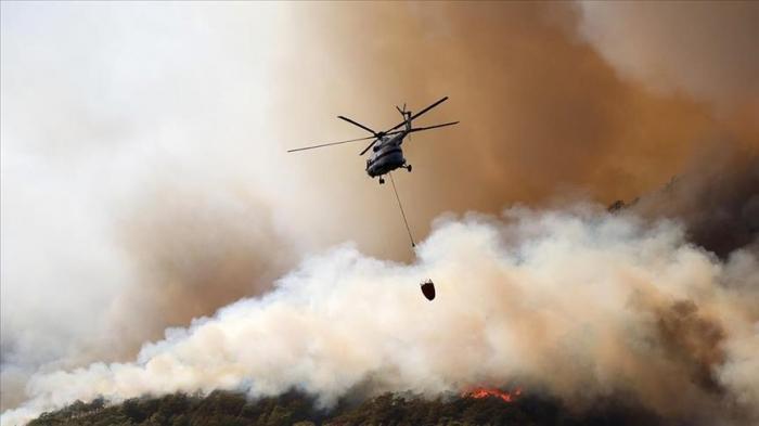 Feux de forêt en Turquie:   les équipes ont pris sous contrôle 57 incendies