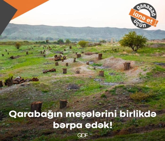 ¡Revivamos Karabaj aún más verde!
