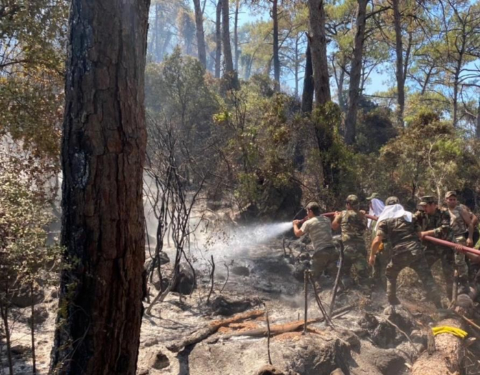 Azerbaijani firefighters continue extinguishing forest fires in Turkey -  PHOTO