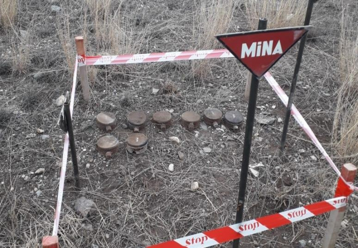 Eight people affected by landmines in July