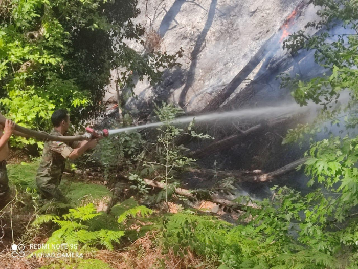 Azerbaijani fire and rescue forces continue firefighting operations in Turkey -  VIDEO/PHOTOS