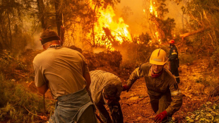 Greek PM apologises as fires rage on Evia island