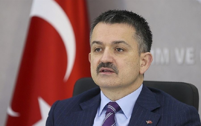 We thank our Azerbaijani brothers for support in fight against forest fires, says Turkish minister