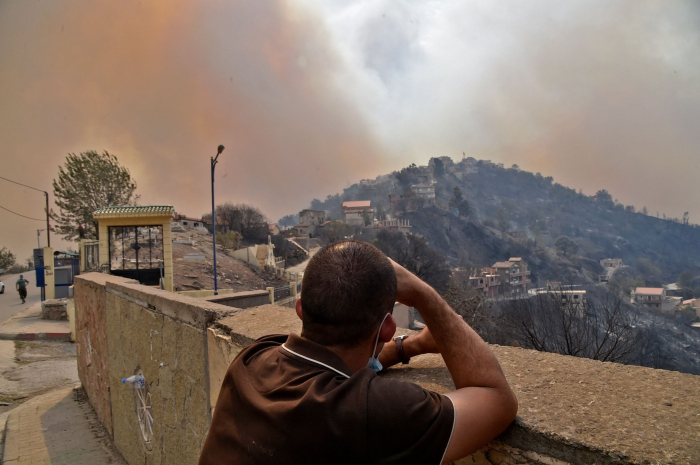At least 65 dead as wildfires rage across Algeria