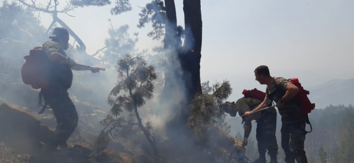 Tasks set by Azerbaijani president to battle wildfires in Turkey completely fulfilled - deputy minister