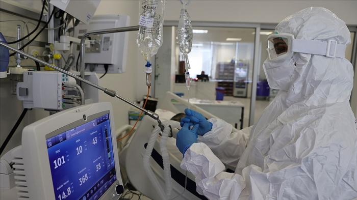 Türkiyədə son sutkada 245 nəfər virusun qurbanı oldu