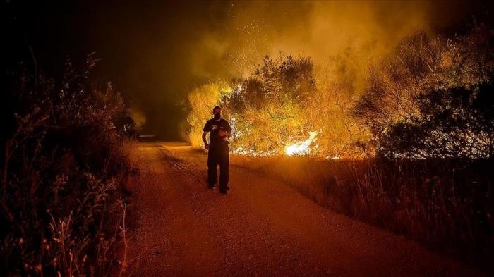 Un suspect arrêté dans le cadre de feux de forêts en Turquie